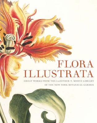 Flora Illustrata By Fraser, Susan M (EDT)/ Sellers, Vanessa Bezemer (EDT)/ Scott & Nix Inc. (PRD)